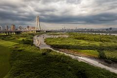 D66_9926 (brook1979) Tags: 新北市 新北大橋 河 cloudy bridge newtaipei