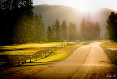Road 路 (T.ye) Tags: landscape forest mist light tone golf course princeton bc canada outside 路 晨霧 光 逆光