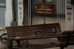 Reality Check. V1 (Flavio~) Tags: streetphotography bench sofa chair woman young dog coke brown juxtaposition contrast wall sexy legs telaviv street reality expectation rehovotphotographyclub florentin hadass bor
