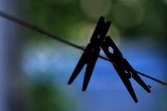 Travelers on the path of life (Goruna) Tags: clothespins clothespegs wäscheklammer silhouette bokeh goruna thread wire path macromondays