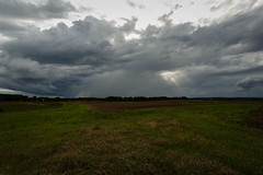 Approaching shower - Pendleton S.C. (DT's Photo Site - Anderson S.C.) Tags: canon 6d 1740mml lens pendleton andersonsc south carolina upstate storm cloud rain weather rural southern america fields pasture sunset