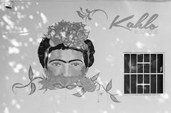 12550016 (alexdotbarber) Tags: 1250 35mm acapulco frida fridakahlo ilforddelta400 kahlo kahloboutique kreativoskolores mexico voigtlanderbessar4a voigtlandercolorskopar21mmf4 analog analogphotography blackandwhite blackandwhitenegative f11 monochrome mural rangefinder wideangle