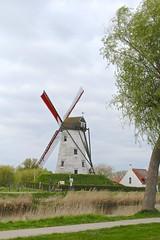 Schellemolen (Brian Aslak) Tags: schellemolen damme westvlaanderen vlaanderen flanders flandre belgië belgique belgium europe windmill