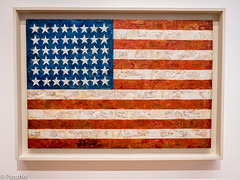 """""""Flag"""" by John Jaspers, 1954-1955, displayed in MoMA (The Museum Of Modern Art) in New York (patuffel) Tags: flag john jaspers the museum of modern art moma usa us new york city"""