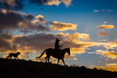 Roping the Sunset (blackhawk32) Tags: cowboy hideout hideoutlodge wyoming dog horses silhouette sunset