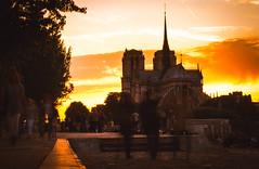 Notre Dame de Paris (Matthew Johnson1) Tags: 2017 june paris notredame city cathereral sunset ghosting exposure walking movement people party promenade beautiful nature