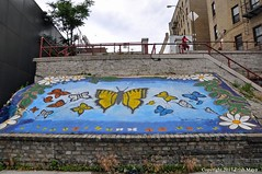 Butterflies Of The Bronx (Trish Mayo) Tags: mural art paintedwall steps staircase bronx stepstreet