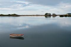 Ngunguru river (Wanda Amos@Old Bar) Tags: water river morninglight reflections dinghy boat seagull newzealand