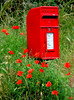 rural postbox (grahamfellows58) Tags: poppy poppies red flowers postbox verge countryside rural village post camber sussex nikon d70s