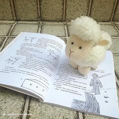 Carneiro - Pequeno Príncipe (mfuxiqueira) Tags: petitprince feltro pequenopríncipe raposa raposinha carneiro carneirinho ovel ovelha ovelhinha
