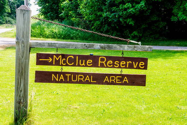 McClue Nature Preserve - June 20, 2017