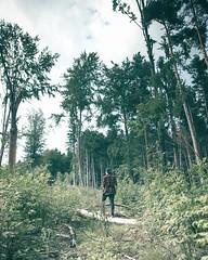 . (Philipp Sarmiento) Tags: philipp sarmiento regensburg ratisbona bavaria germany travel landscape drone inspire dji lifestyle canon sigma