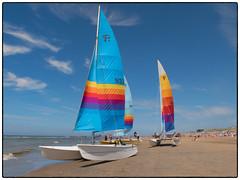 zonnig Zandvoort (Kruijssen) Tags: fujifilmx30 zandvoort zee zeil catamaran kleur strand