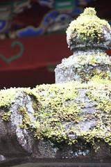 IMG_2635 (normafincher) Tags: japan nikko nikkonationalpark