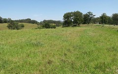 Lot 21 Wirrimbi Road, Newee Creek NSW