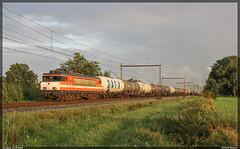 Locon (HSL) 9903+keteltrein, Hengelo, 21-8-2016 (Allard Bezoen) Tags: locon hsl logistiks benelux 9900 9903 ex ns 1800 trein train zug lok elok loc eloc locomotief lokomotieve locomotive ketels ketelwagens keteltrein hengelo westermaat gatx lotos