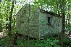 Disintigrating with time's passage (DjD-567) Tags: salisbury nh cabins dilapidated collapsed rotted forgotten obscured rusting 03268