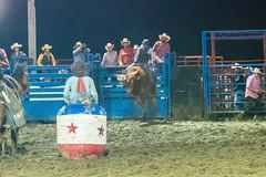 DSC_4423-Edit (alan.forshee) Tags: rodeo horse cow ride fall buck spin twirl bull stallion boy girl barrel rope lariat mud dirt hat sombrero