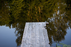The Floating Deck (modestmoze) Tags: deck wooden wood planks trees nature naturephotograph 2017 500px june summer sky blue day city park lithuania travel explore outside outdoors beautiful view fresh new floating plants grass leaves green brown bokeh 50mm nikon