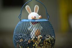 Argggggggg!!! (I'magrandma) Tags: wabbids cartoon birdfeeder useless funny nonsense blue secondhandtoy toy