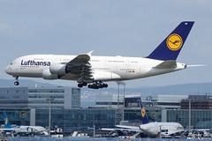 Lufthansa --- Airbus A380 --- D-AIMB (Drinu C) Tags: adrianciliaphotography sony dsc rx10iii rx10 mk3 fra eddf plane aircraft aviation lufthansa airbus a380 daimb