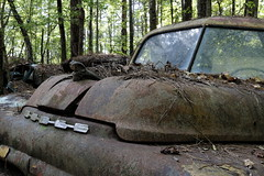 Busted Bulbous Nose (95wombat) Tags: classic car wreck junker antique rust bucket corroded oxidation auto sweat mosquitoes georgia oldcarcityusa