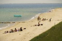 Seasons in the sun (Sunset Sailor) Tags: sun sand beach summer swimmers skiff ocean sea shore painterly vineyard explore