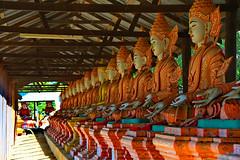 A DI DA PHAT QUAN THE AM BO TAT DAI THE CHI BO TAT GUANYIN KWANYIN BUDDHA 9185 (ketnoivietnam) Tags: amazing affectionate amitabha architecture art asia avalokitesvara awesome bangkok beautifull beijing palace bhutan bodhisattva bouddha buddha tooth relic temple buddhism buddhist china chinatown chua excellent fantastic flickraward gold golden guanyin hainan hdr history hong kong indian information japan korea kuanim kuanyin kwanyin laos laughing 佛 观音 観音 寺
