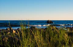 Midsummer light (Joni Mansikka) Tags: nature summer outdoor sea shore blues greengrass sky view seascape balticsea reposaari pori suomi suomi100 finland finland100 tokinaaf2880mmf28
