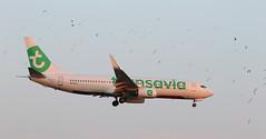 Transavia / Boeing 737-8K2 / PH-HXJ (vic_206) Tags: bcn lebl transavia boeing7378k2 phhxj pajaros birds gaviotas gulls