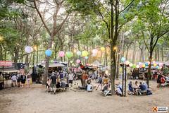 Onder de bomen (Omroep Brabant) Tags: best kept secret festival hilvarenbeek bestkeptsecret brabant omroepbrabant
