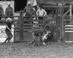 DSC_4600-Edit-2 (alan.forshee) Tags: rodeo horse cow ride fall buck spin twirl bull stallion boy girl barrel rope lariat mud dirt hat sombrero