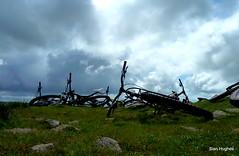 High St & Nan Bield Pass (56) (Carl and Sian) Tags: lakes lakedistrict carlandsian singletrack sian cumbria cycling bikes mountainbiking mtb alpine orangemountainbikes orange orangefive segment adventurebiking outdoors