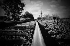 the line. (HansEckart) Tags: bw blackandwhite tracks outdoor train rails monochrome landscape