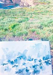 Sketch at Point Lobos, California (mayakonakamura) Tags: tonydevarco bonniedevarco california bay santacruz mayakonakamura drawing triptousa2017 summer collaboration northcalifornia contemporaryart usa pointlobos inkpainting sketch