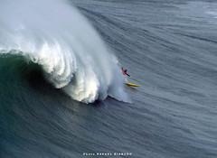 GABRIEL VILLARAN (Perú)  / 4278NAZ (Rafael González de Riancho (Lunada) / Rafa Rianch) Tags: surf waves surfing olas sport deportes sea mer mar nazaré vagues ondas portugal playa beach 海の沿岸をサーフィンスポーツ 自然 海 ポルトガル heʻe nalu palena moana haʻuki kai olahraga laut pantai alam mare sports esportes water