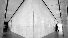(zx1355566) Tags: 台灣 街拍 黑白 安藤忠雄 建築 單色 室內 台湾 黒と白 モノクローム taiwan building andotadao bnw black white