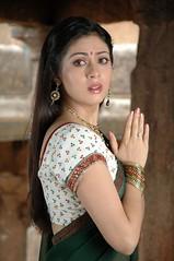 Indian Actress SADA Photos Set-3 (38)