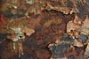 aging beautiful (Elly Snel) Tags: roest rust oilcan metal metaal paper papier crumbled verkruimeld numbers challengeyouwinner cy2