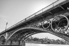 ponte de Séville (Rudy Pilarski) Tags: trianabridge pont bridge nikon thebestoffnikon tamron 18270 d7100 architecture cercle line ligne bw nb structure moderne seville