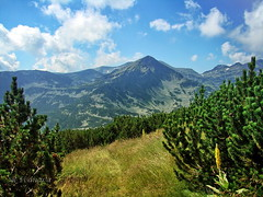 Pirin Mountain, Bulgaria (R_Ivanova) Tags: nature landscape mountain mountainside hill outdoor sky summer cloud clouds color colors green blue sony mountainepeak bulgaria pirin rivanova риванова българия пирин природа пейзаж планина autoremovedfrom10to25faves