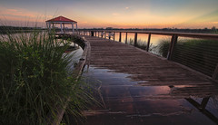 Reflection (tshabazzphotography) Tags: hdr hdrphotography hdrphoto canon boardwalk canopy walkway orlando baldwinpark florida tropics sunriseheaven sunriselovers sunrise morningglow glow wideangle 10mm bracketed