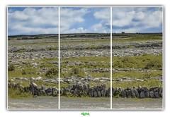 EVERYTHING I SEE TURNS TO STONE (régisa) Tags: burren ireland irlande stone pierre plateau karstique désertique clare anh bhoirrean countyclare karst landscape paysage burrennationalpark limestone