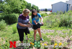 4-H Clover College 2017 - Picture This - 04 (UNL Extension in Lancaster County) Tags: picturethis