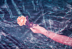 Marble Fountains (Hayden_Williams) Tags: rose hand hold holding give giving flower bloom dream romance love gift water ripples tide pool dreamy surreal magic film analog analogue ae1 canonae1 lomography lomochromepurplexr100400 doubleexposure multipleexposure