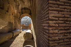Inside Coliseum (Fernando Xambre) Tags: history história arena coliseu inside xambre eurotrip canon gladiators gladiador romano romana roma rome coliseum italy itália