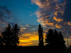 Day 190: Morning Promises (Paul Howard Photo) Tags: ifttt 500px sky landscape sunrise morning city nature sun light clouds outdoor tree cityscape silhouette dawn weather panoramic outdoors horizontal olympus backlit mirrorless omd no person landscapephotography fair alberta 365project reddeer em1 omdem1 olympuscamera paulhowardphotography paulhowardphoto paulhowardphotocom protectedbypixsy