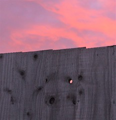 I spy (jenbrasnett) Tags: makemesmile 7dosopeninggeometrysunday week 48 sunset fence knothole pink round ellipse circular evening