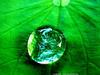 Işığı görmemizi sağlayan molekül: Muons (Teknoformat) Tags: ışın klorofil molekül molekülerbiyoloji scientificresearch scientist sunlight yeşil