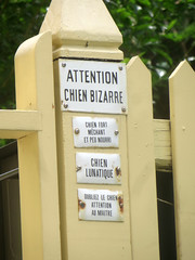Attention Chien Bizarre (edenpictures) Tags: providence rhodeisland theshunnedhouse hplovecraft 135benefitstreet stephenharrishouse